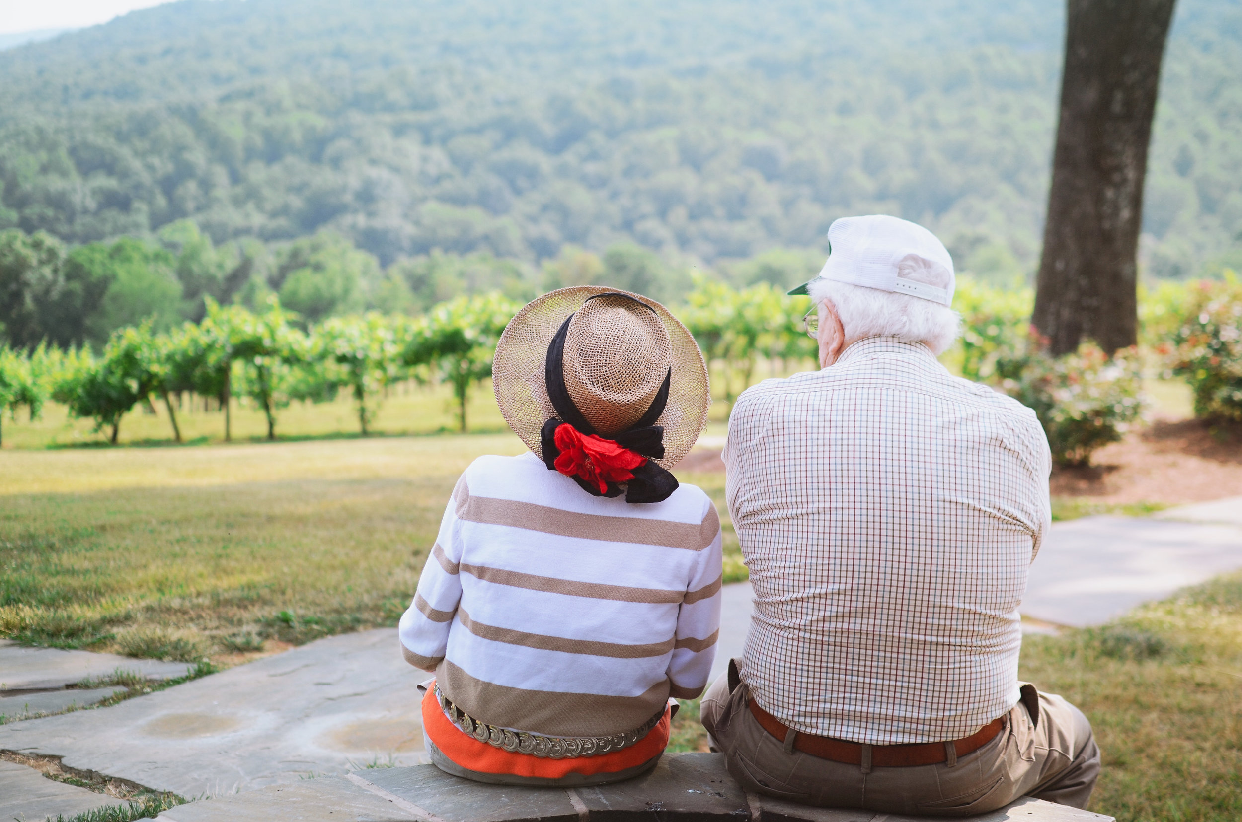 An elderly man and a woman in a hat sitting on a stone wall, looking at vineyards.