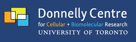 DonnellyLogo.png