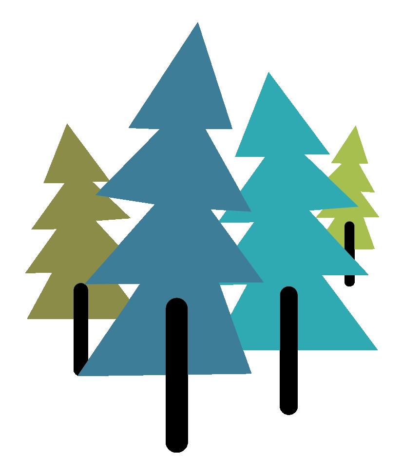 logo_54.png