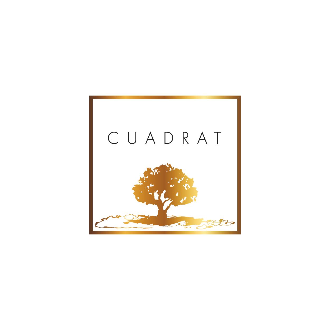 CUADRAT_Plan de travail 1.png