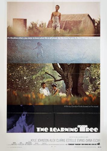 Learning-Tree-1969.jpg