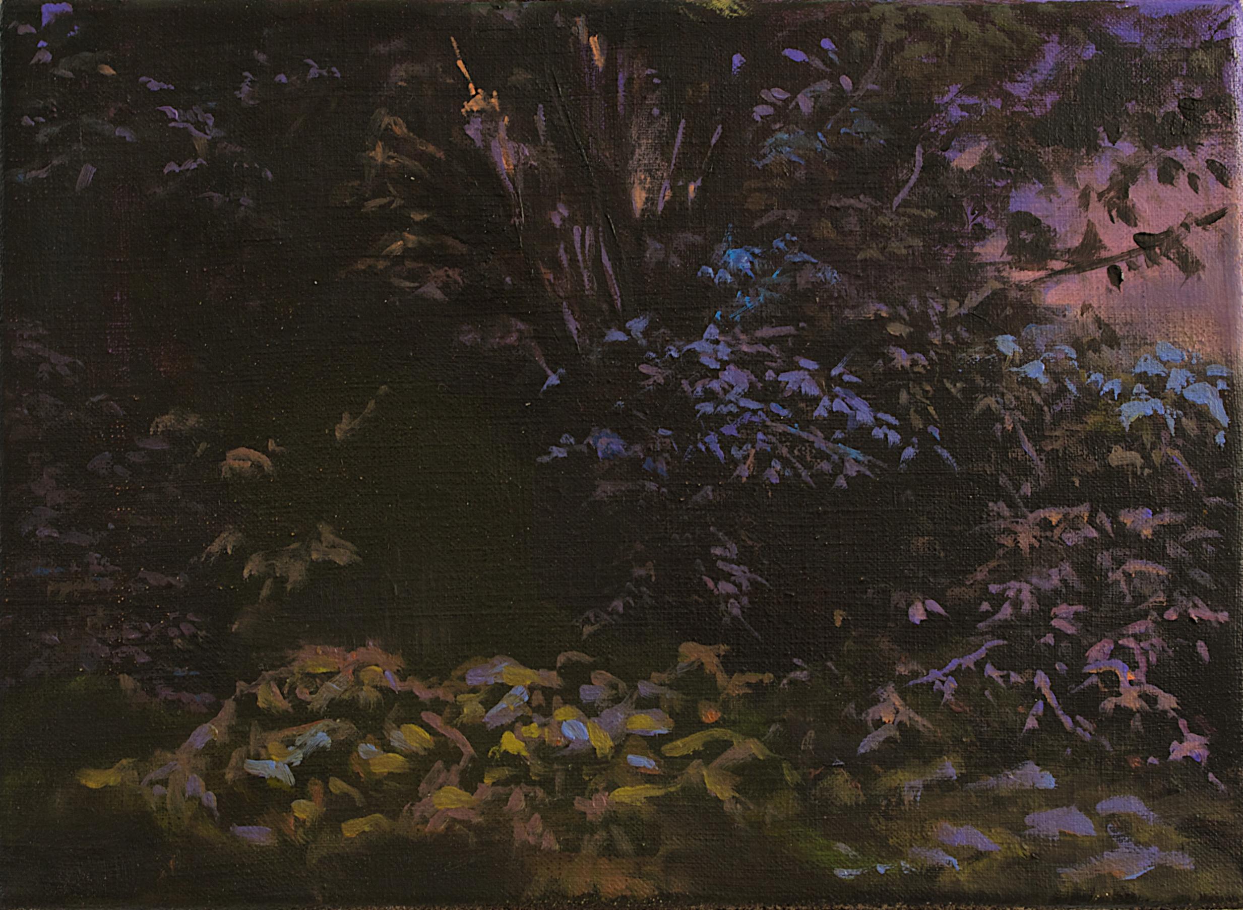 Hannah Brown. Sketch_for_Washford_Pyne_13. Oil on linen.24x33cm.jpg
