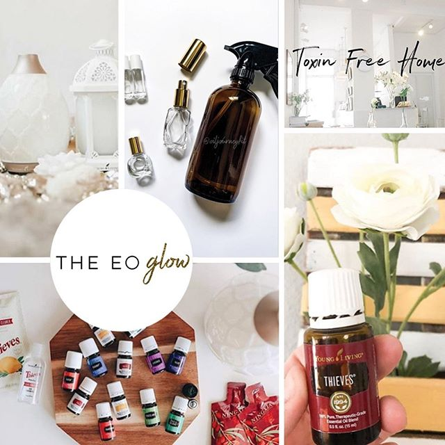 I am so excited to be working with @thedailyarden on this amazing project for @theeoglow. Stay tuned! Gorgeous branding, beautiful website and cute store coming soon!!! ✨