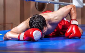 boxer down small.jpg