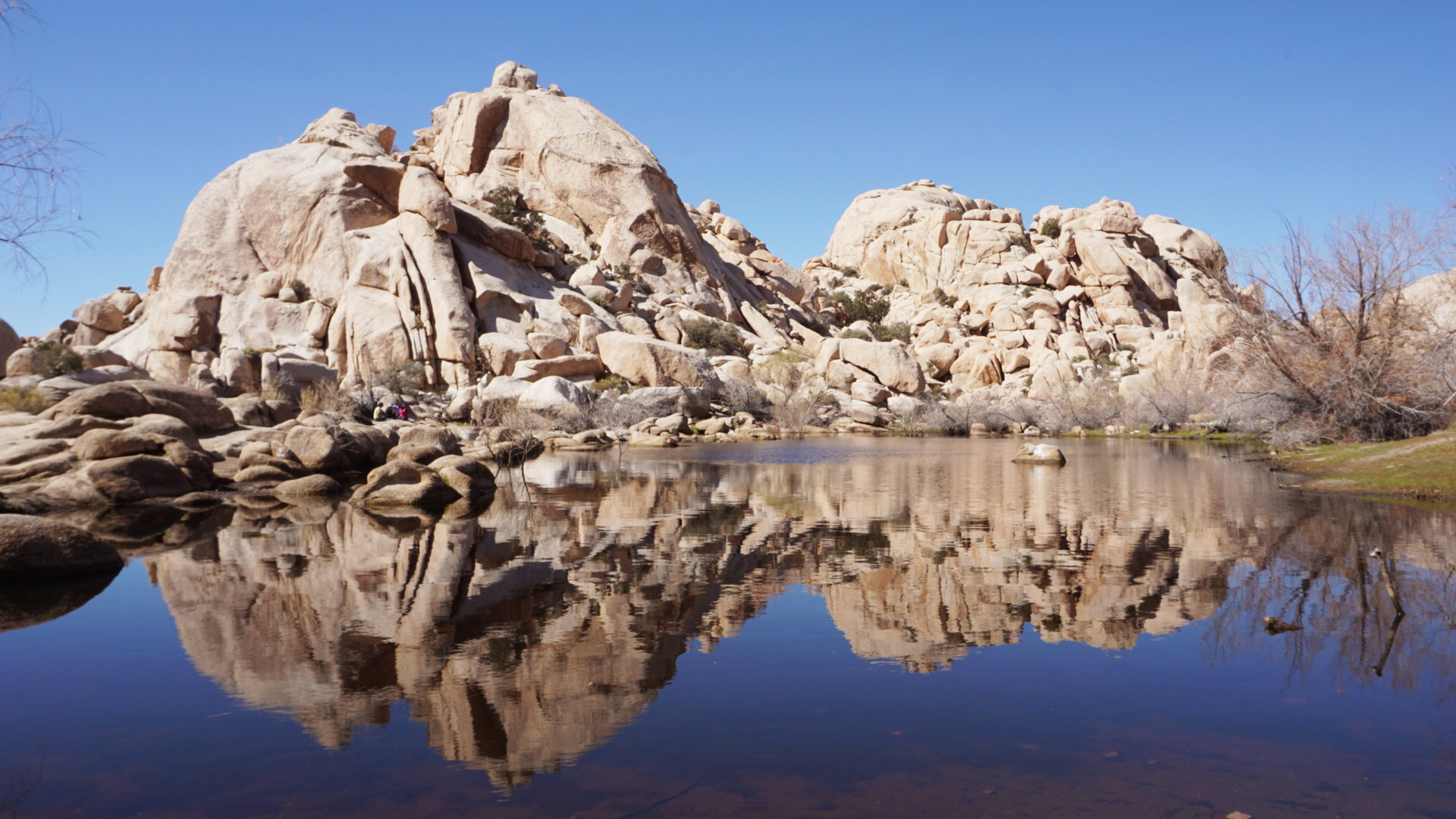joshua-tree-lake-things-to-do.jpg