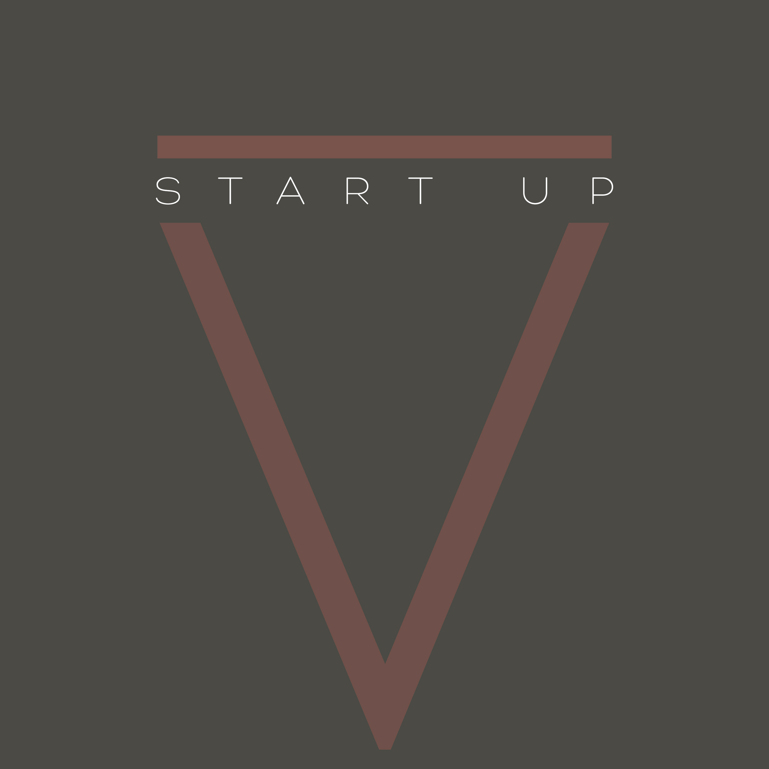 STARTUP.png