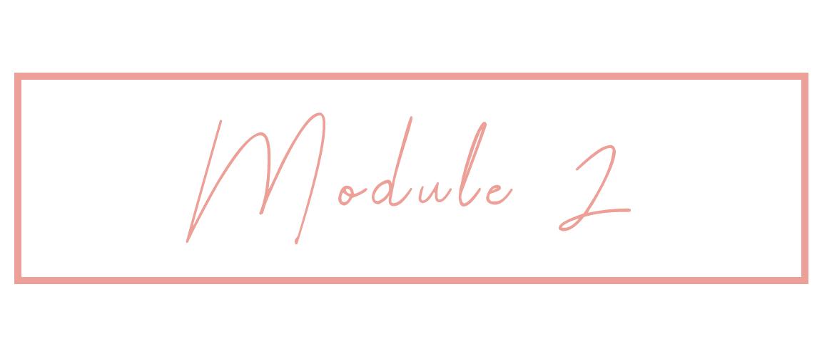Module_2.png