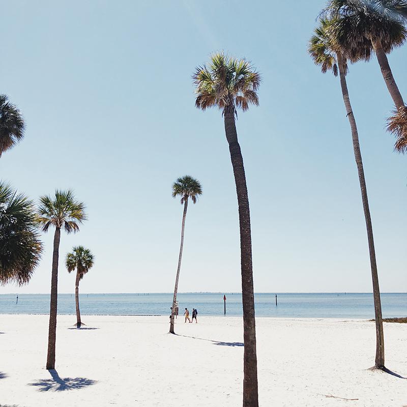tampa-beach-800px.jpg