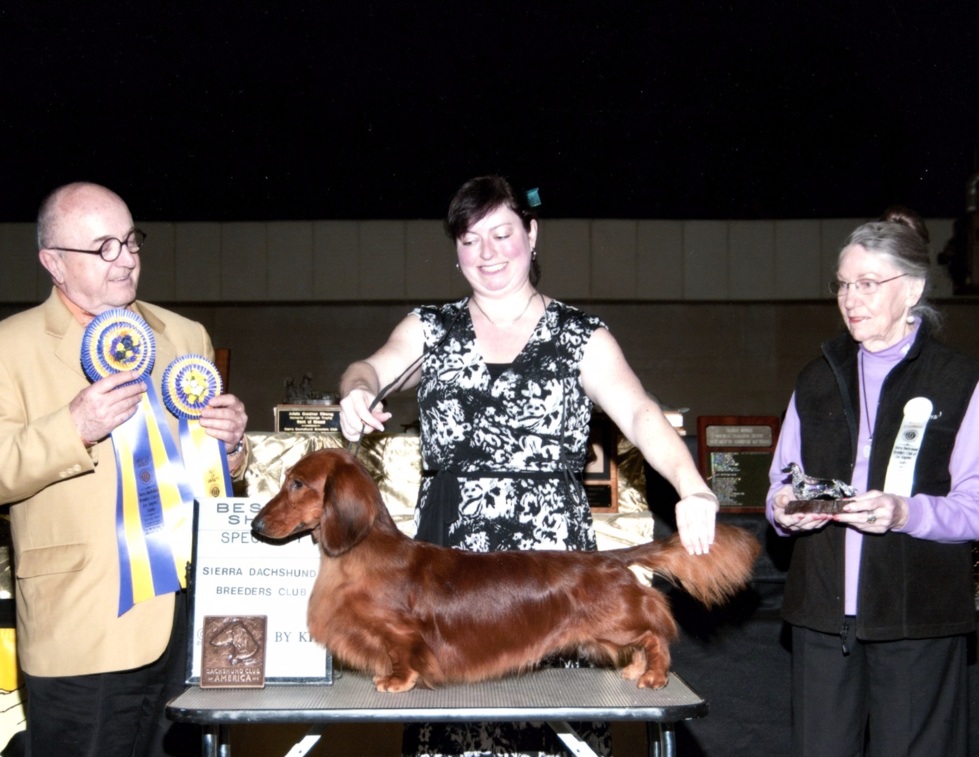Brando - Multi Best in Specialty ShowGCHB Pramada's Living Legend L