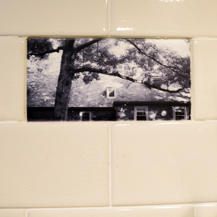 Custom photographic ceramic tiles for a home in Mt. Airy, Philadelphia.