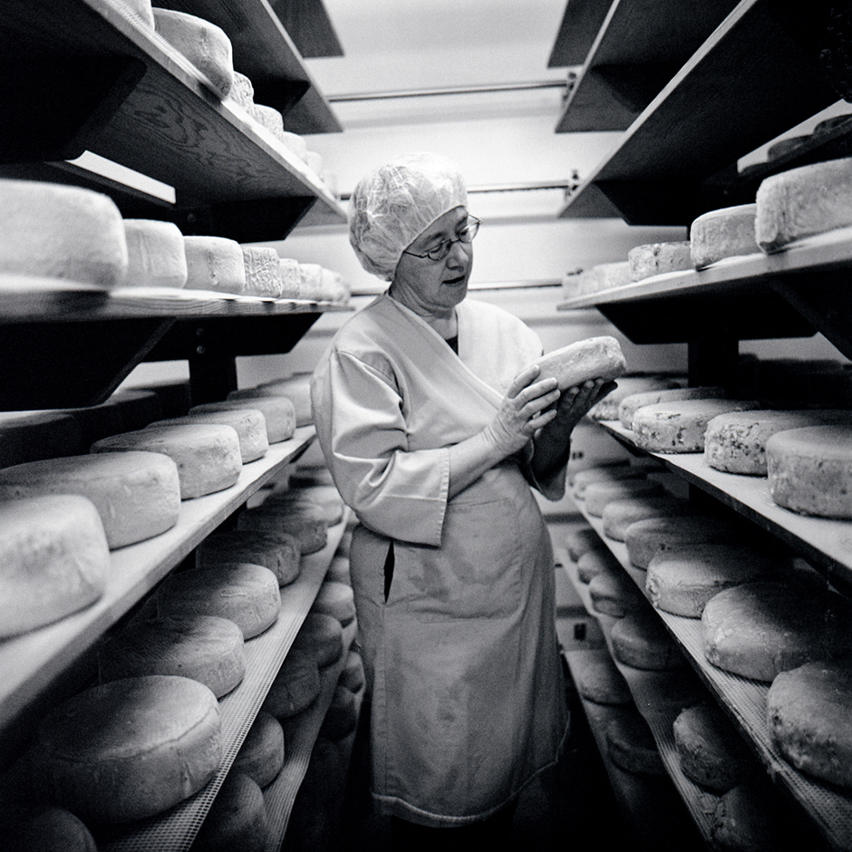 Goat cheese maker, Petaluma, CA, USA.