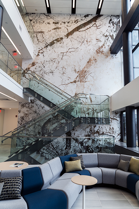 Custom photographic wall vinyl for  Brandywine Realty Trusts'  office building in Devon, PA. In collaboration with  granum a/i .
