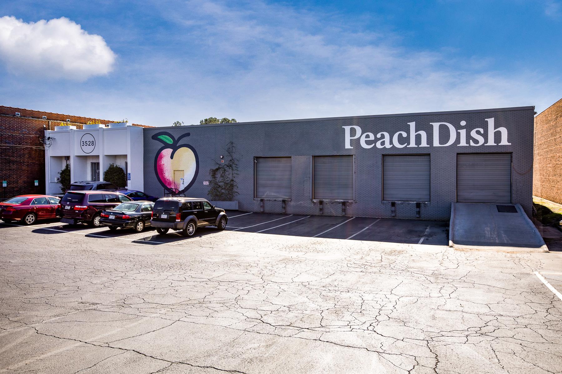 PEACHDISH-2.jpg