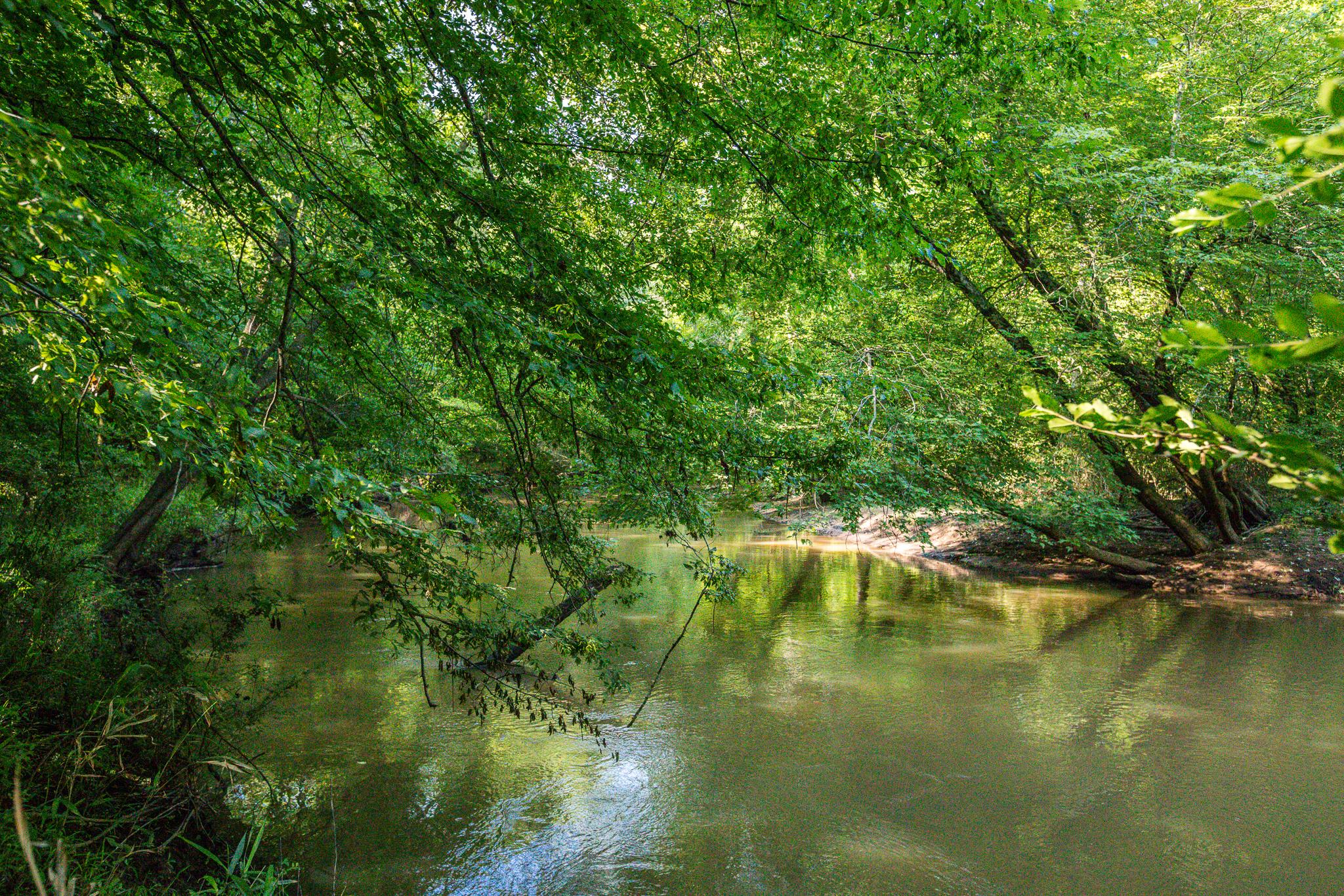 283 Old Starrsville Rd, Covington, Georgia 30014-21.jpg