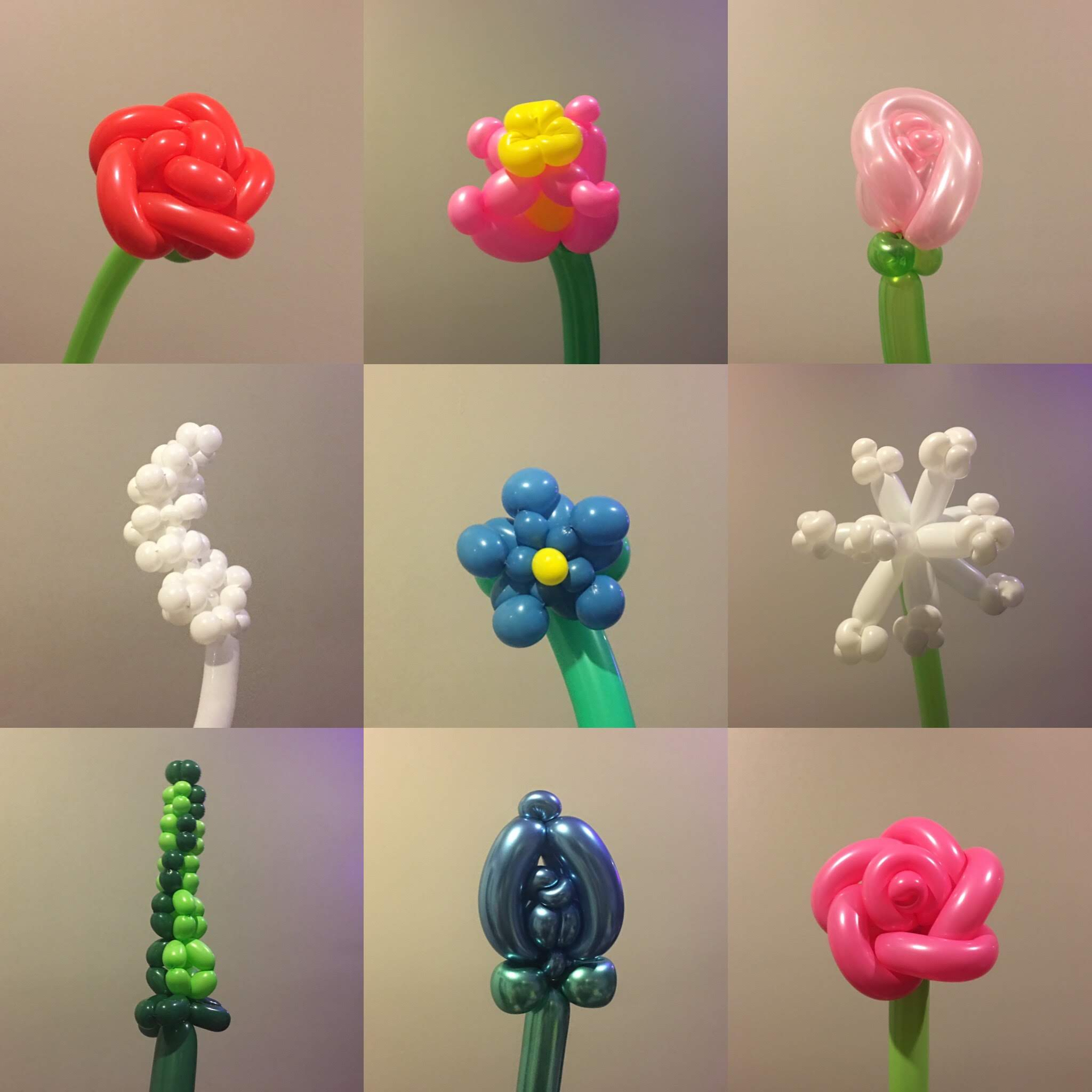 Silver-Tier Balloon Flower examples