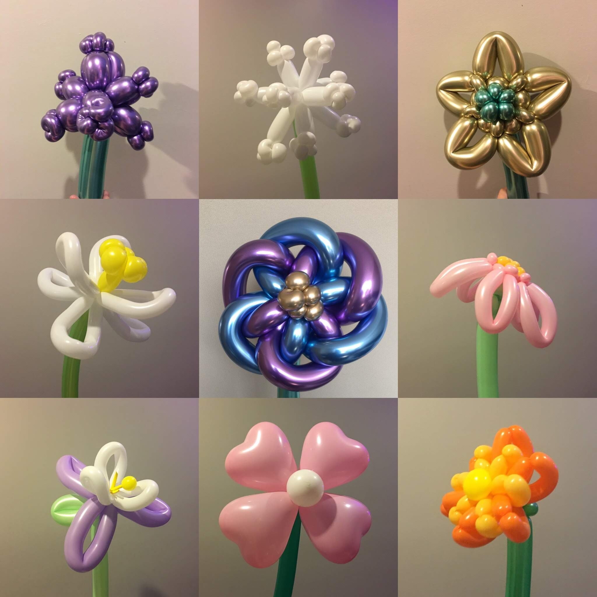 Gold-Tier Balloon Flowers examples