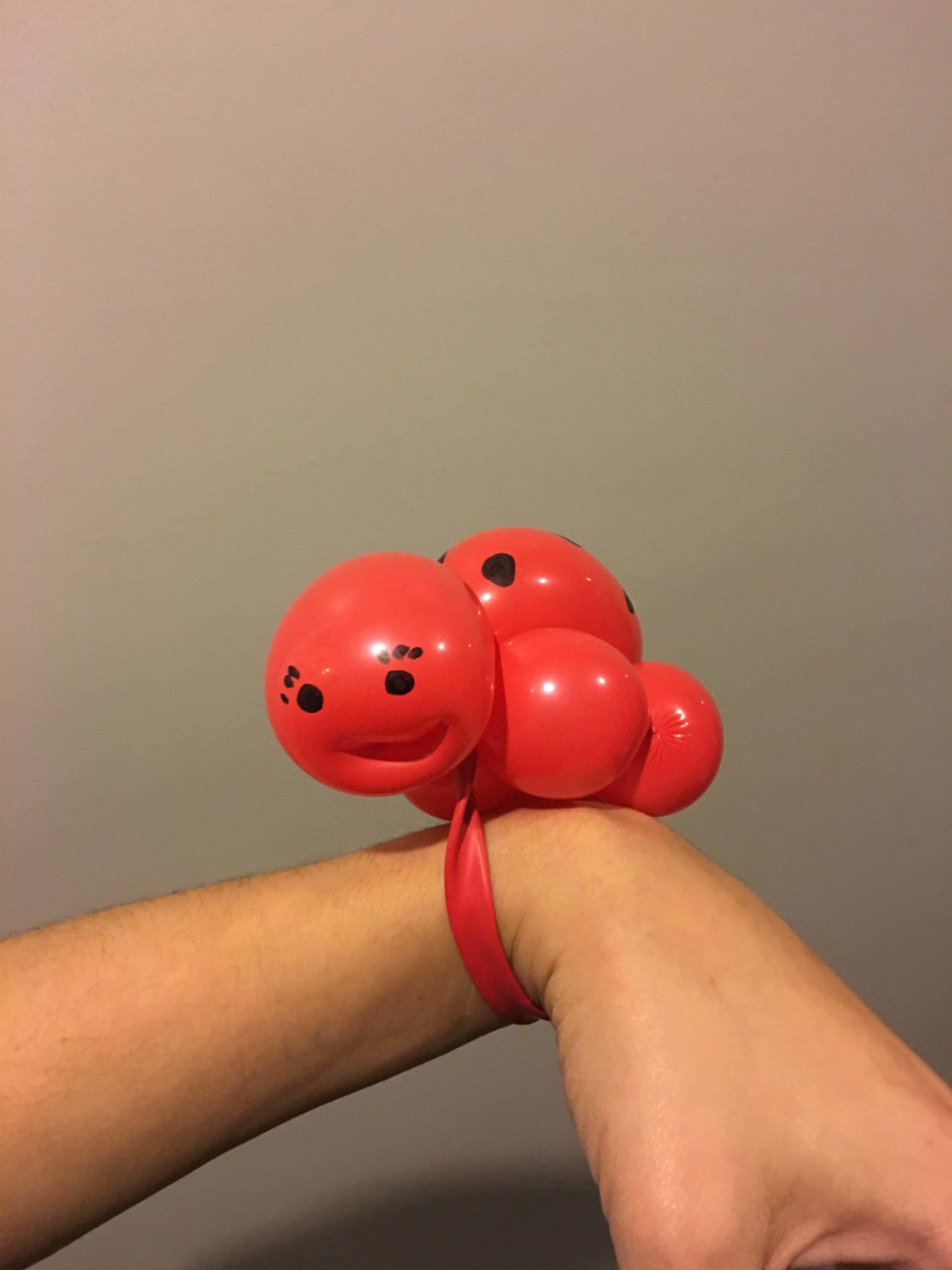 twist ladybug baby.jpg