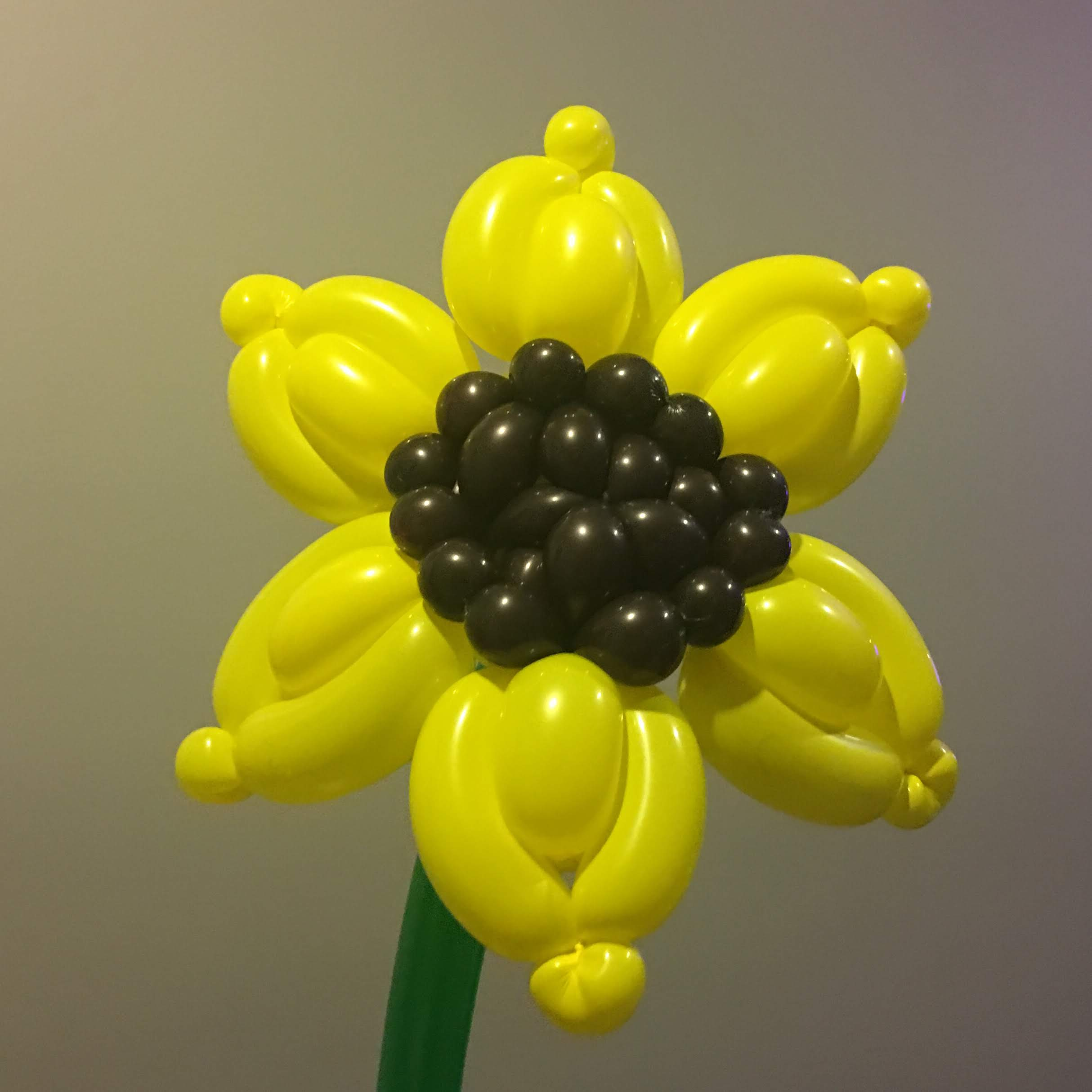 Indiv. Super Premium Traditional and outrageous. Sunflower.jpg