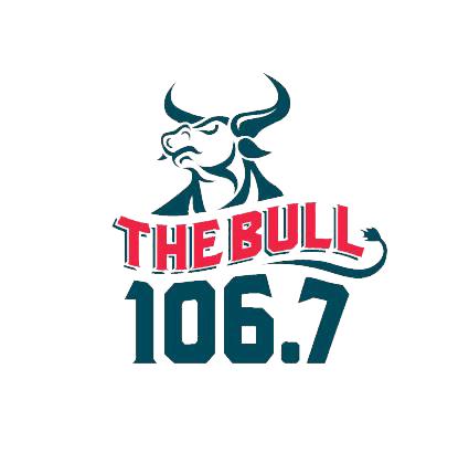 bull-logo-transparent.png