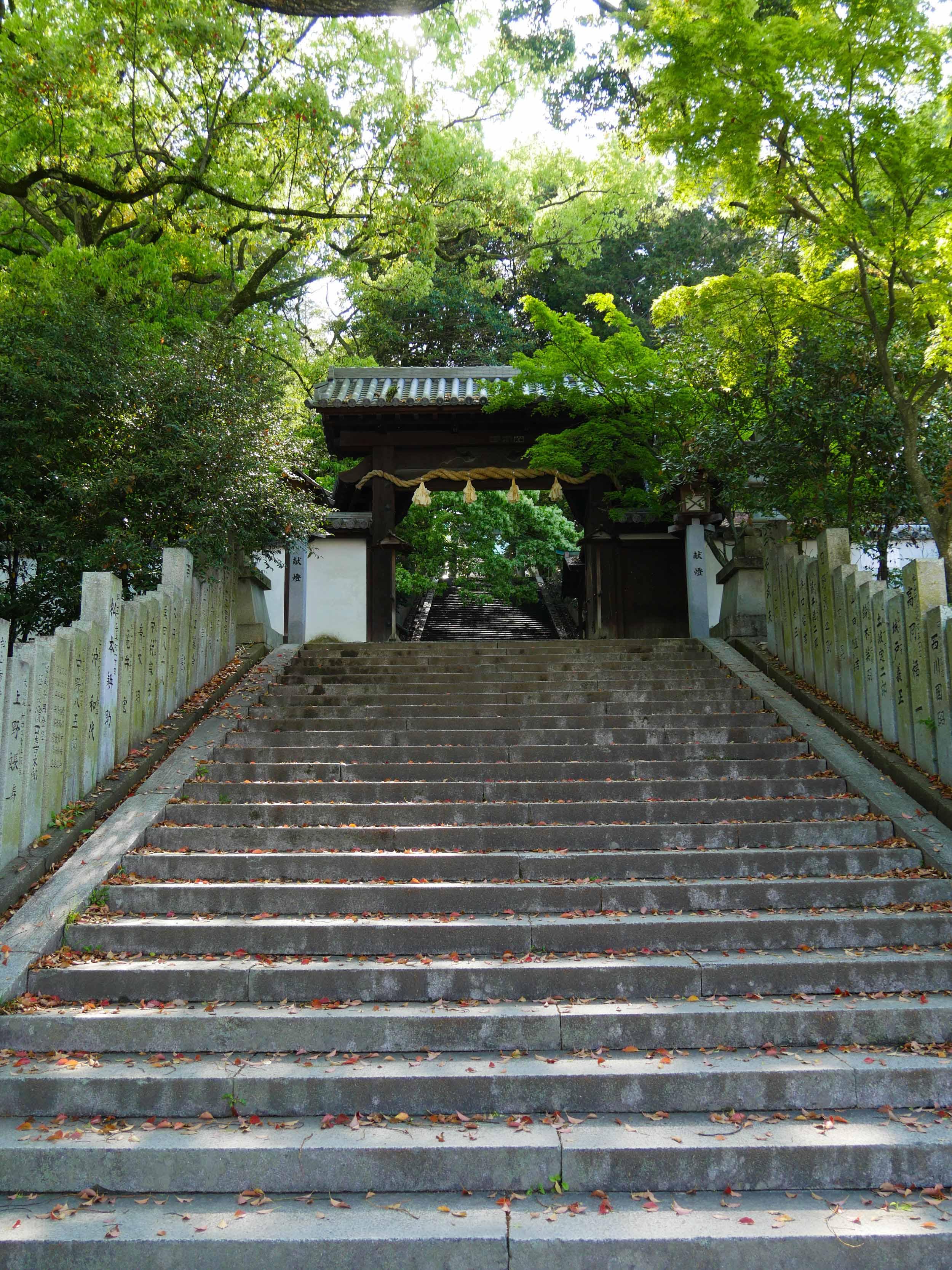 matsuyama-castle-hill-6.jpg