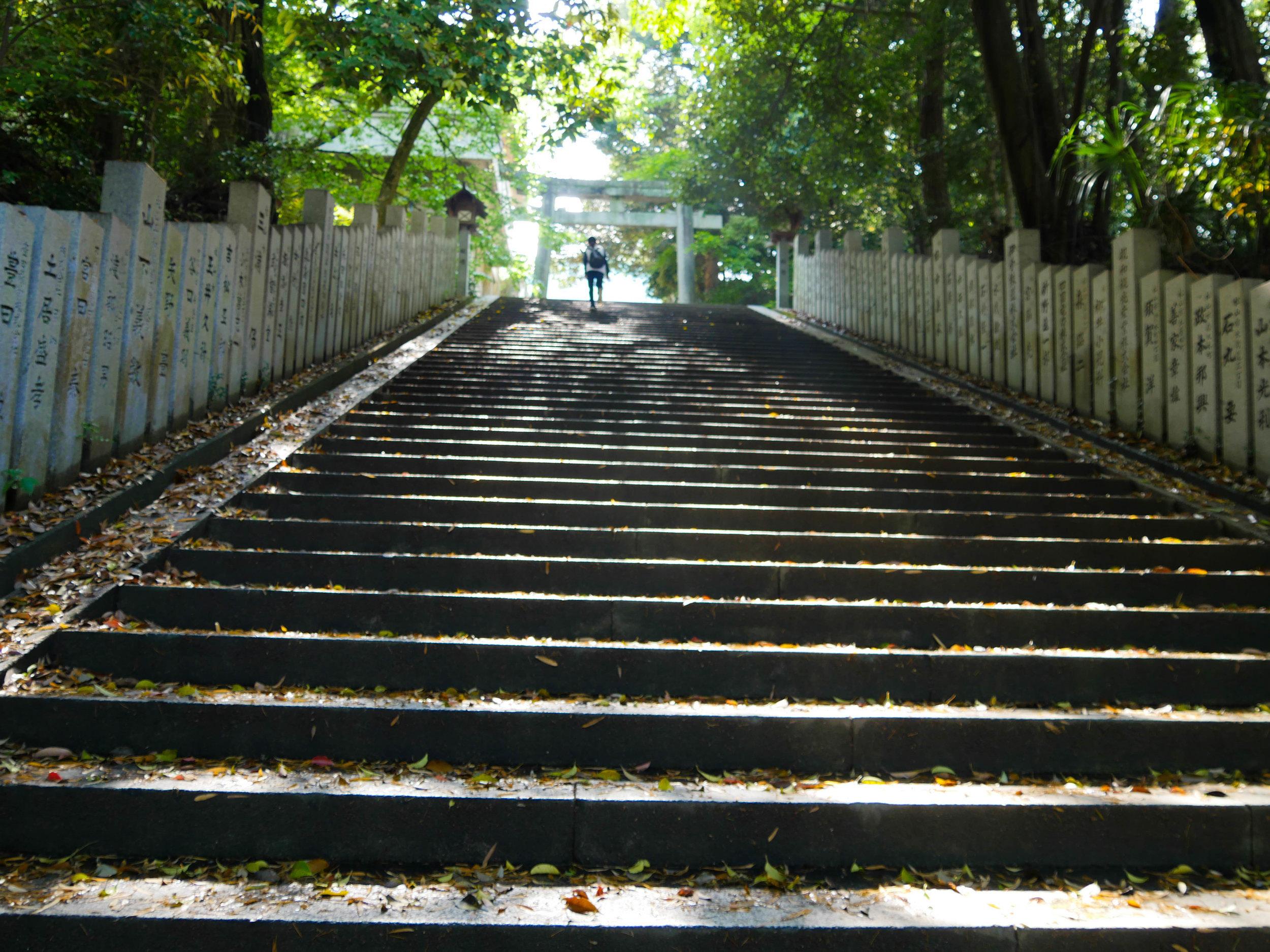matsuyama-castle-hill-7.jpg