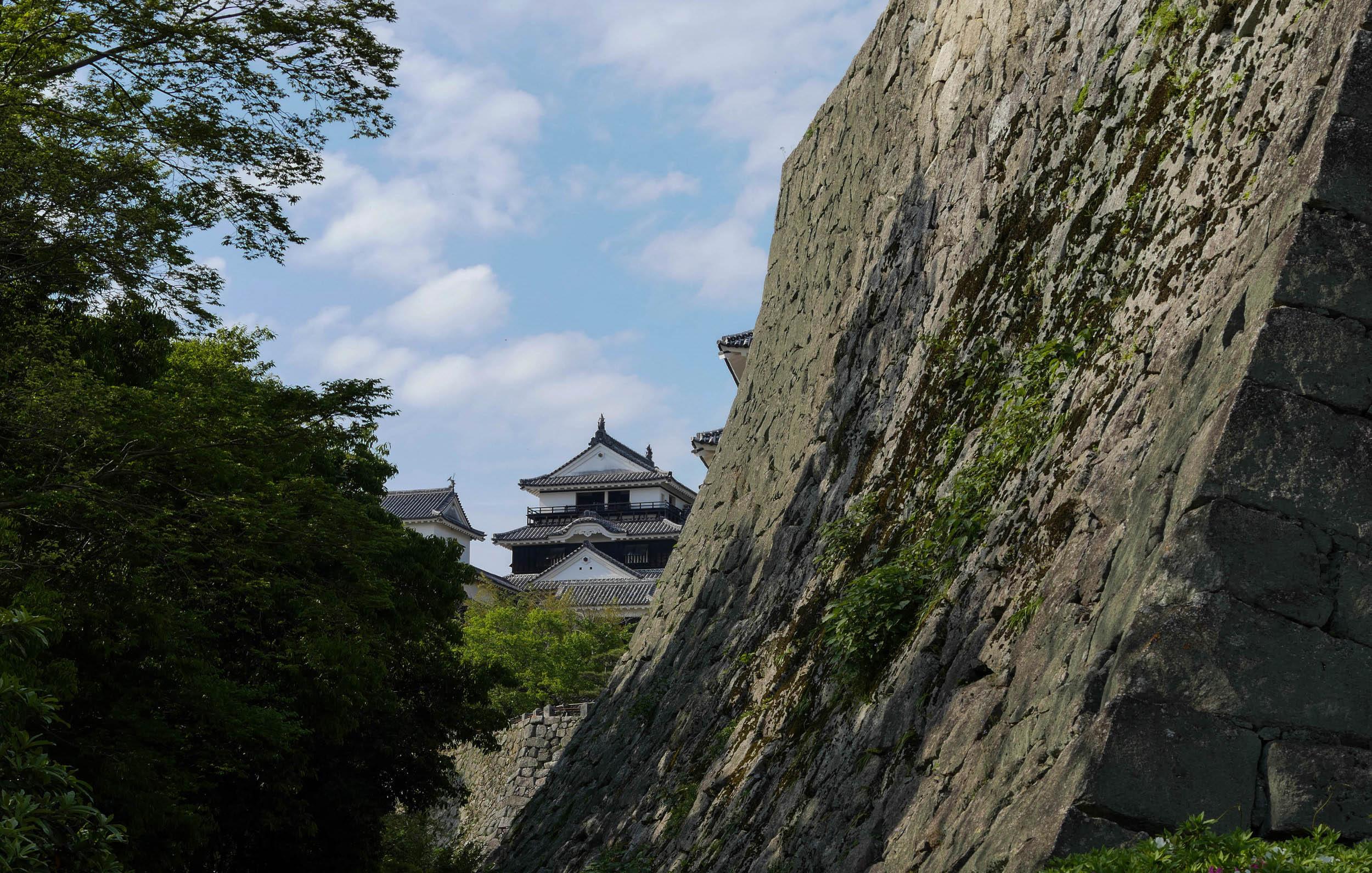matsuyama-castle-hill-10.jpg