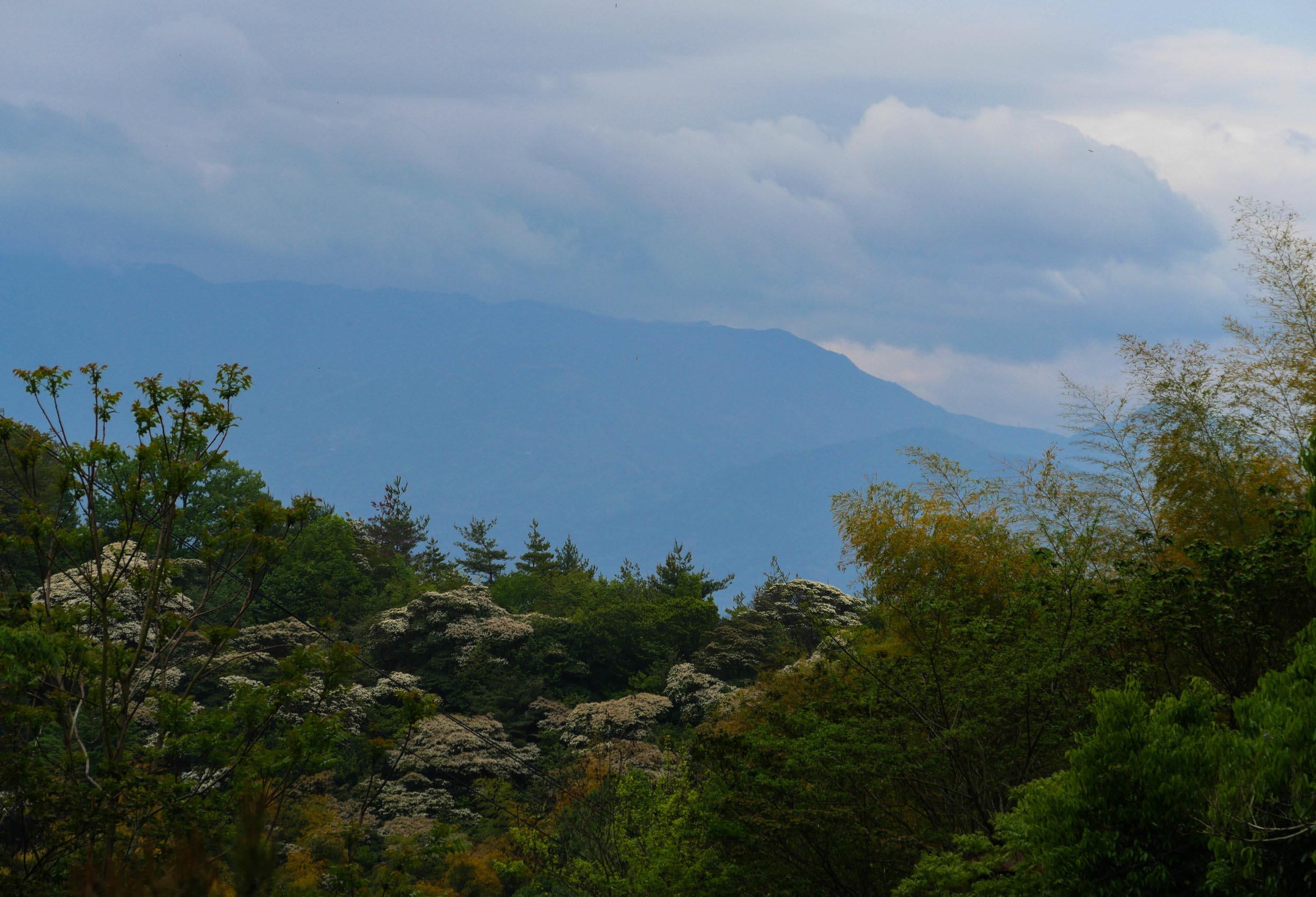 matsuyama-dougo-onsen-42.jpg