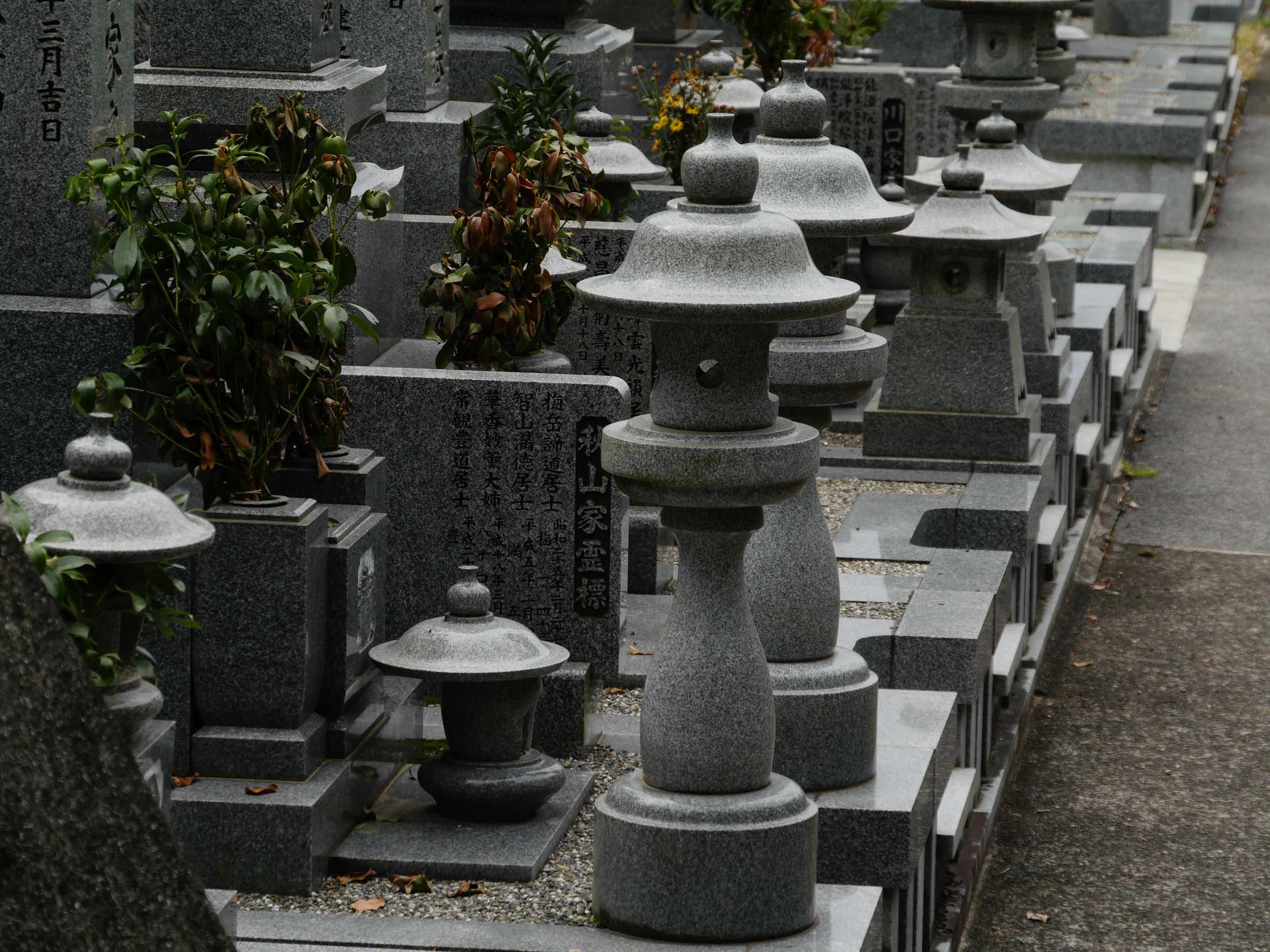 matsuyama-dougo-onsen-43.jpg