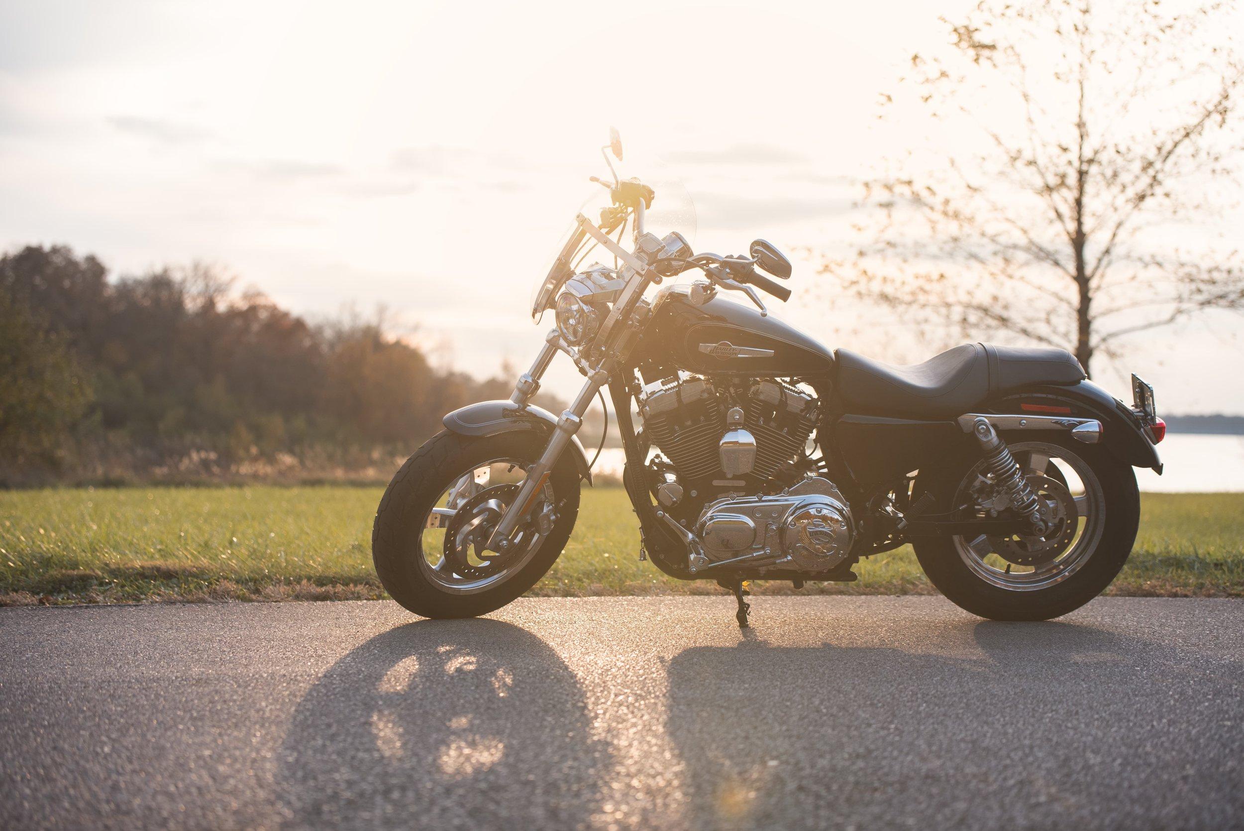 M_Loden_bikes_003.jpg