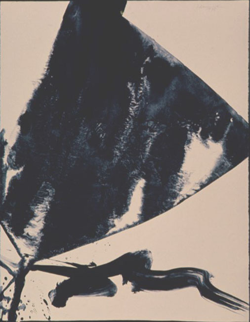 Broken Kite , 1975 lithograph 30 x 22 inches; 76.2 x 55.9 centimeters