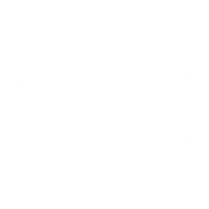 FAIF - OFFICIAL SELECTION.png