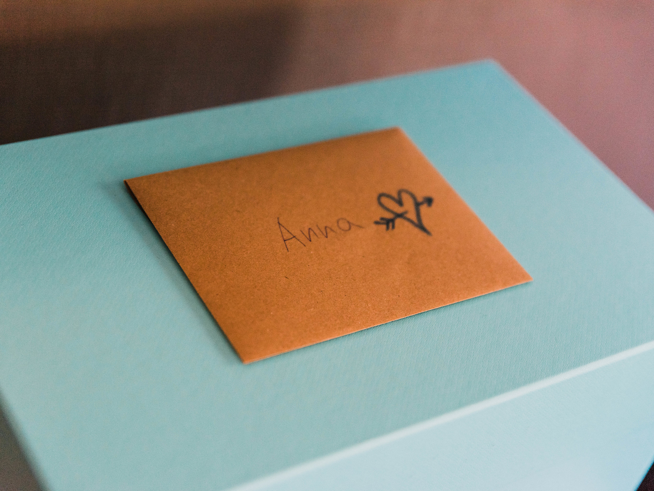 Seattle Wedding- MV Skansonia - Anna + Josh -  (45).jpg