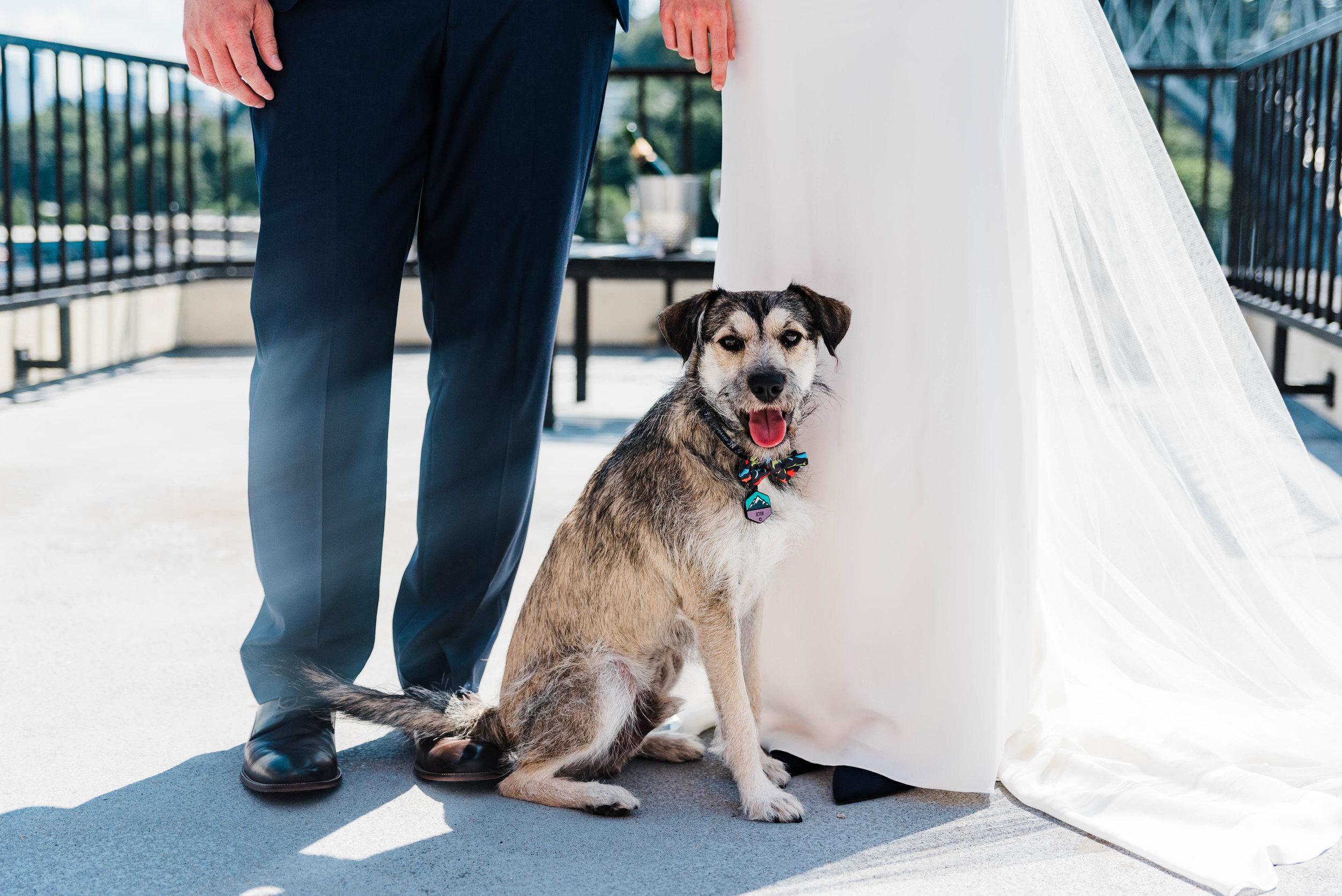 Seattle Wedding- MV Skansonia - Anna + Josh -  (500) - Copy.jpg