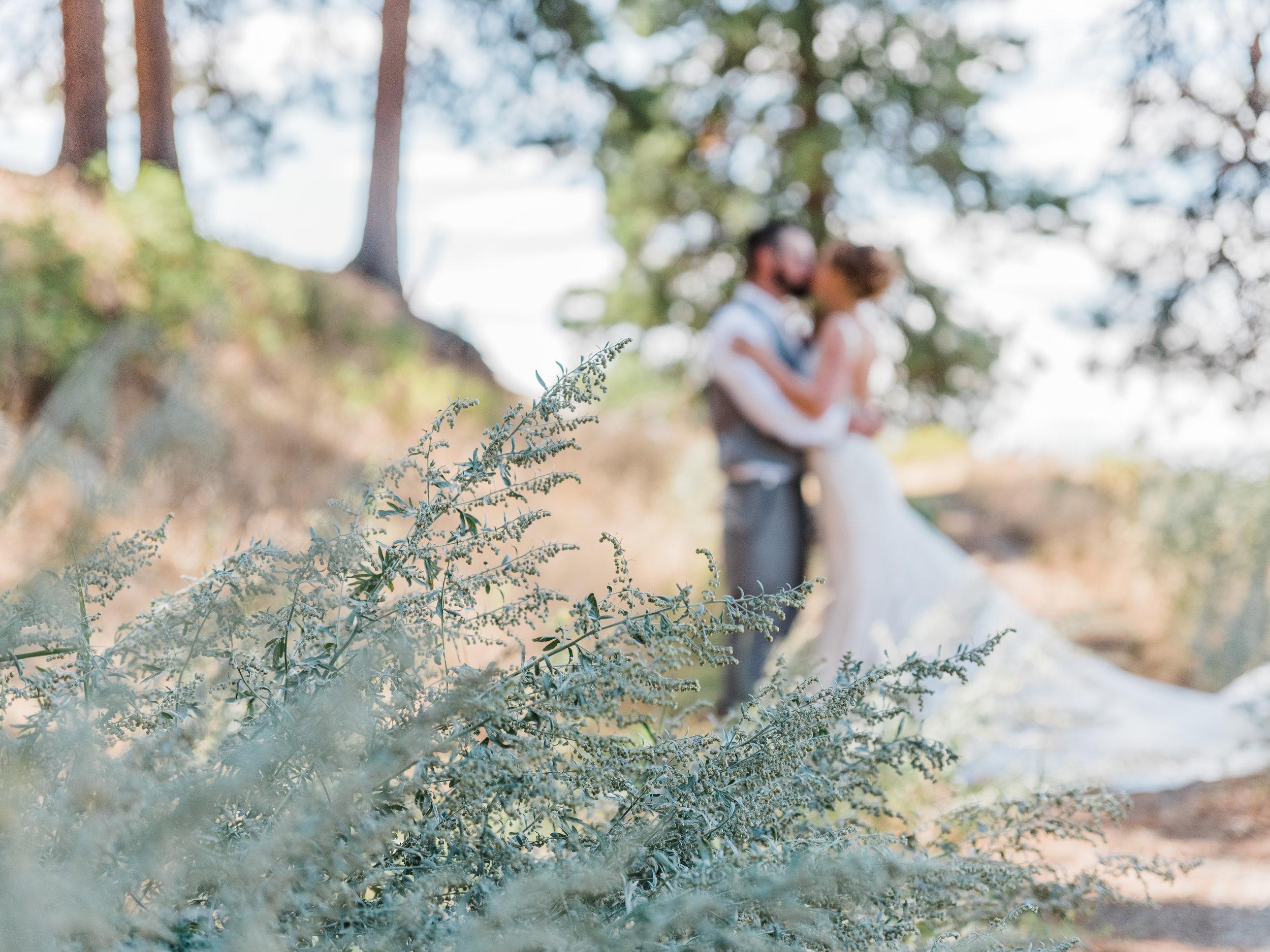 Cle Ellum Washington Wedding - Tyra and Tom-  (242).jpg