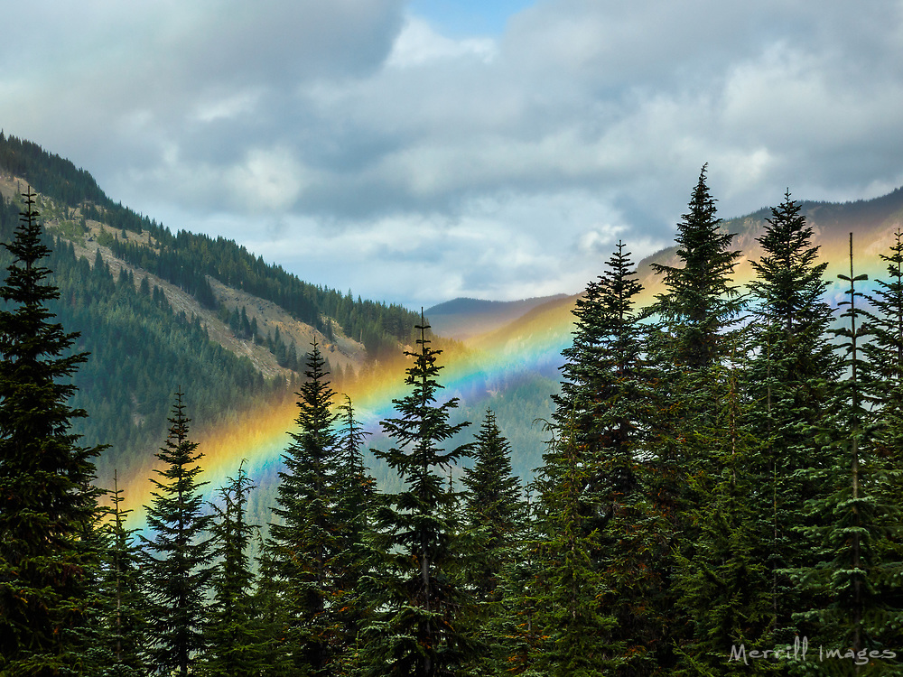 United States_ Washington_ Crystal Mountain_ rainbow in valley through trees..jpg