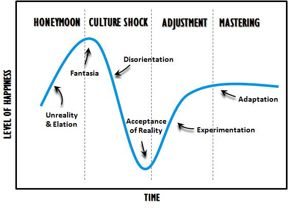 Culture-Shock graph .png