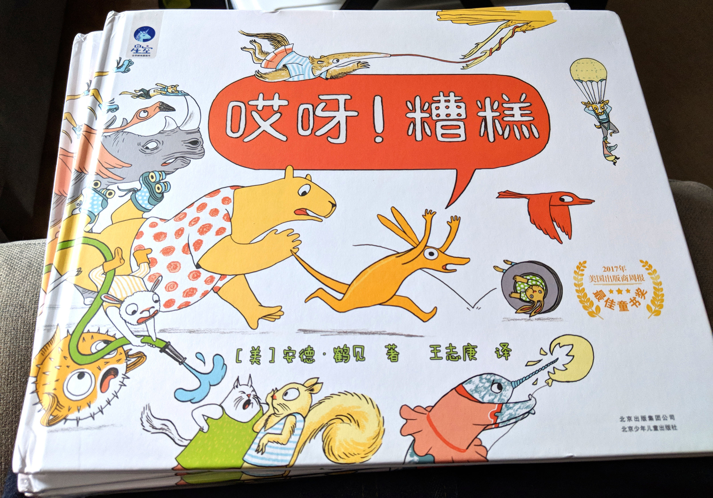 ACCIDENT (simplified) Chinese edition