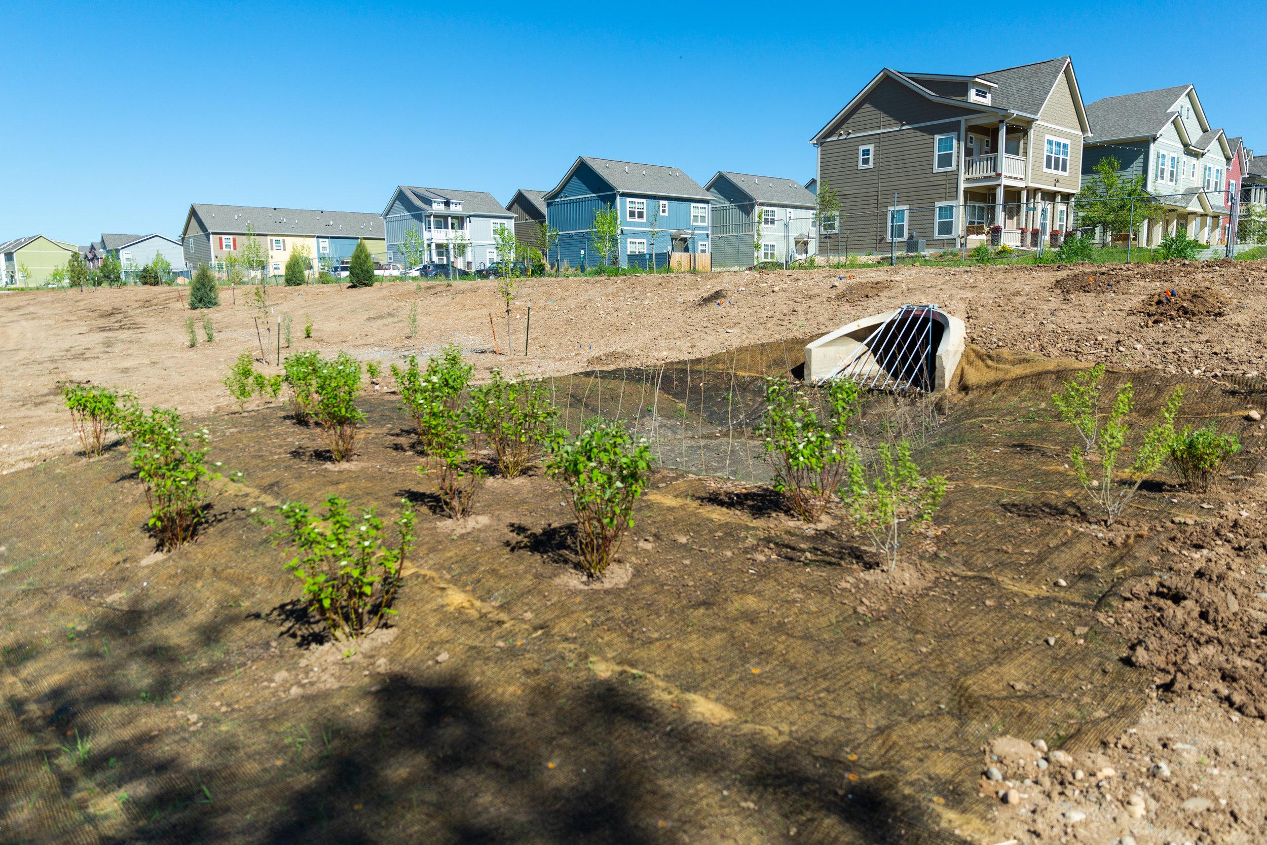 Zak George Landscaping - Commercial Landscape Design & Install-14.jpg
