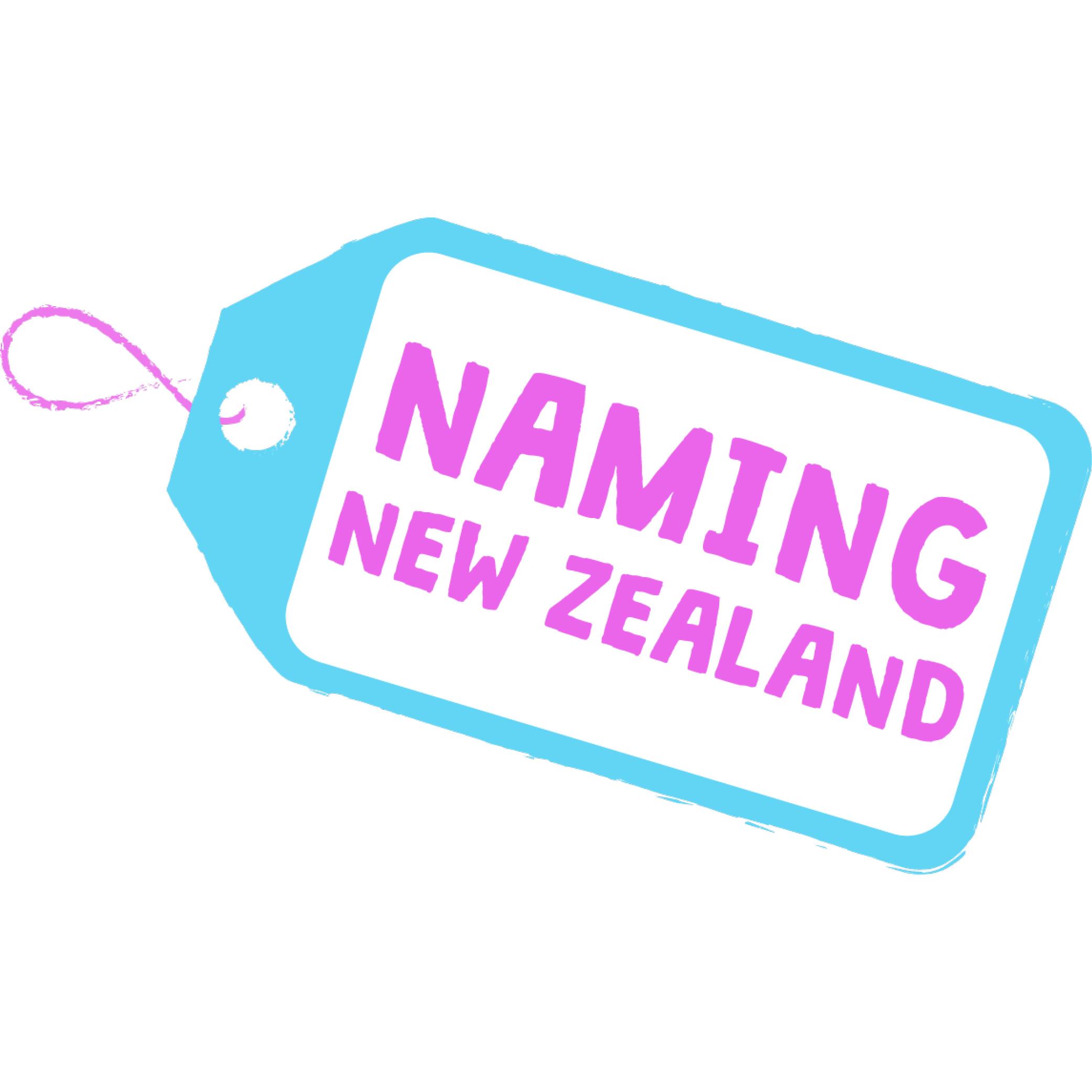 NAming NZ Logo (PNG) -