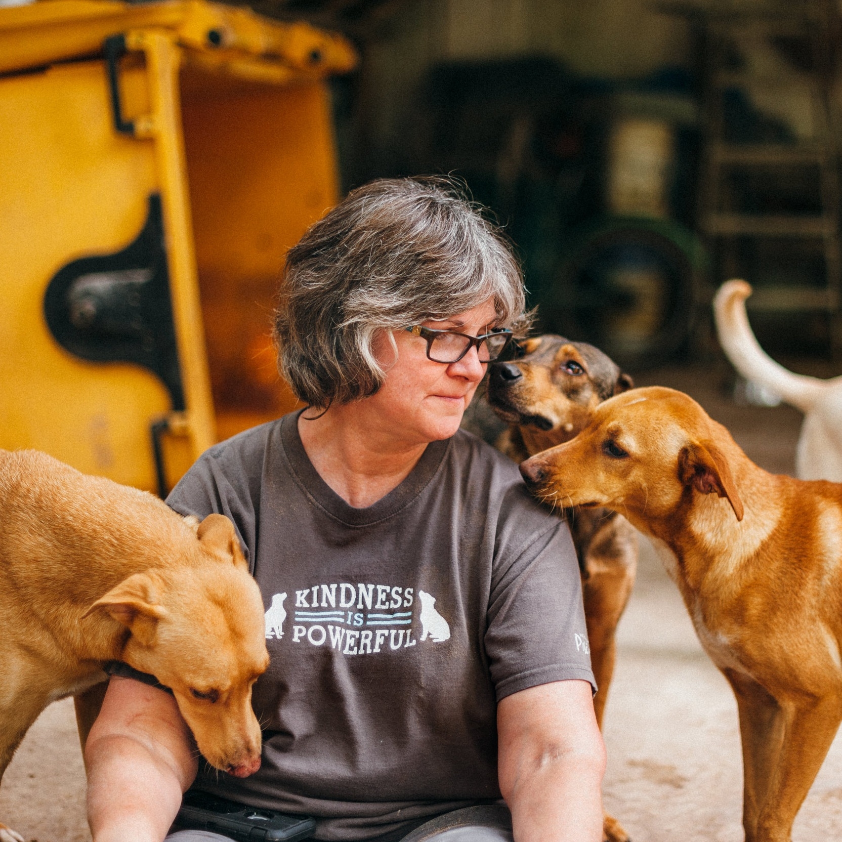 LAURA HILLS - Owner, TrainerKPA-CTP; CPDT-KSA; CCFT; CTDI; CGC evaluator; C.L.A.S.S. evaluator; VSPDT; Certified Fear Free TrainerLaura is the founder and owner of The Dogs' Spot – Dog Training Center. Laura has been teaching people how to train their dogs since 2004.Laura specializes in our Family Manners series, including Canine Good Citizen and Canine Life and Social Skills classes. She also leads the FitPaws Canine Conditioning classes.Laura lives with four dogs: Skeeter, Guinness, Fiona and Poppet