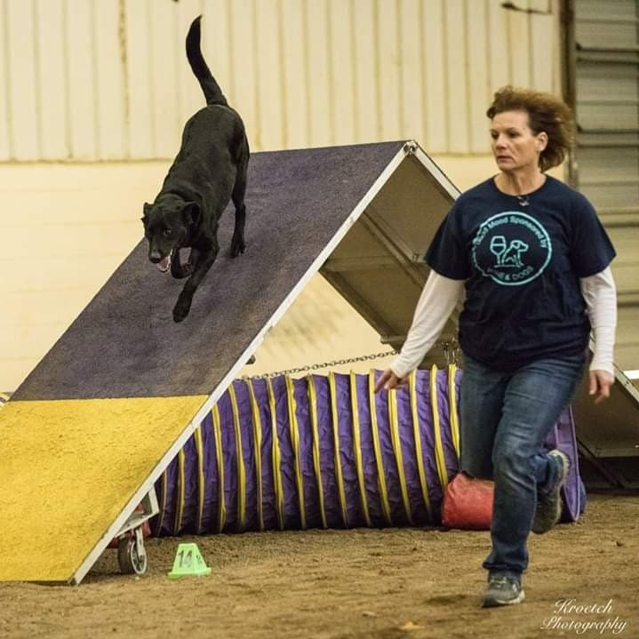LEANN HISEROTE - NADAC Sponsored Agility trainerLeAnn is our on-staff agility expert. LeAnn is the instructor for all of our agility classes as well as an assistant instructor for FitPaws Canine Fitness, Puppy Prep and Surviving Adolescence classes.In addition, LeAnn is a preschool teacher by day and an avid agility competitor by night. She and her dog Bear have been active in agility since 2012 and have competed at the national level.