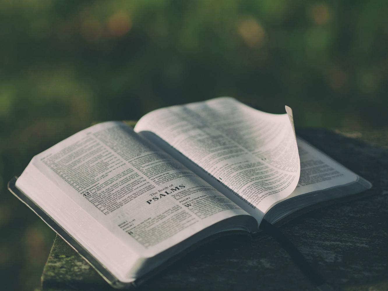 bible green-lowres.jpg