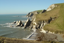 Coastal_Path_9.jpg