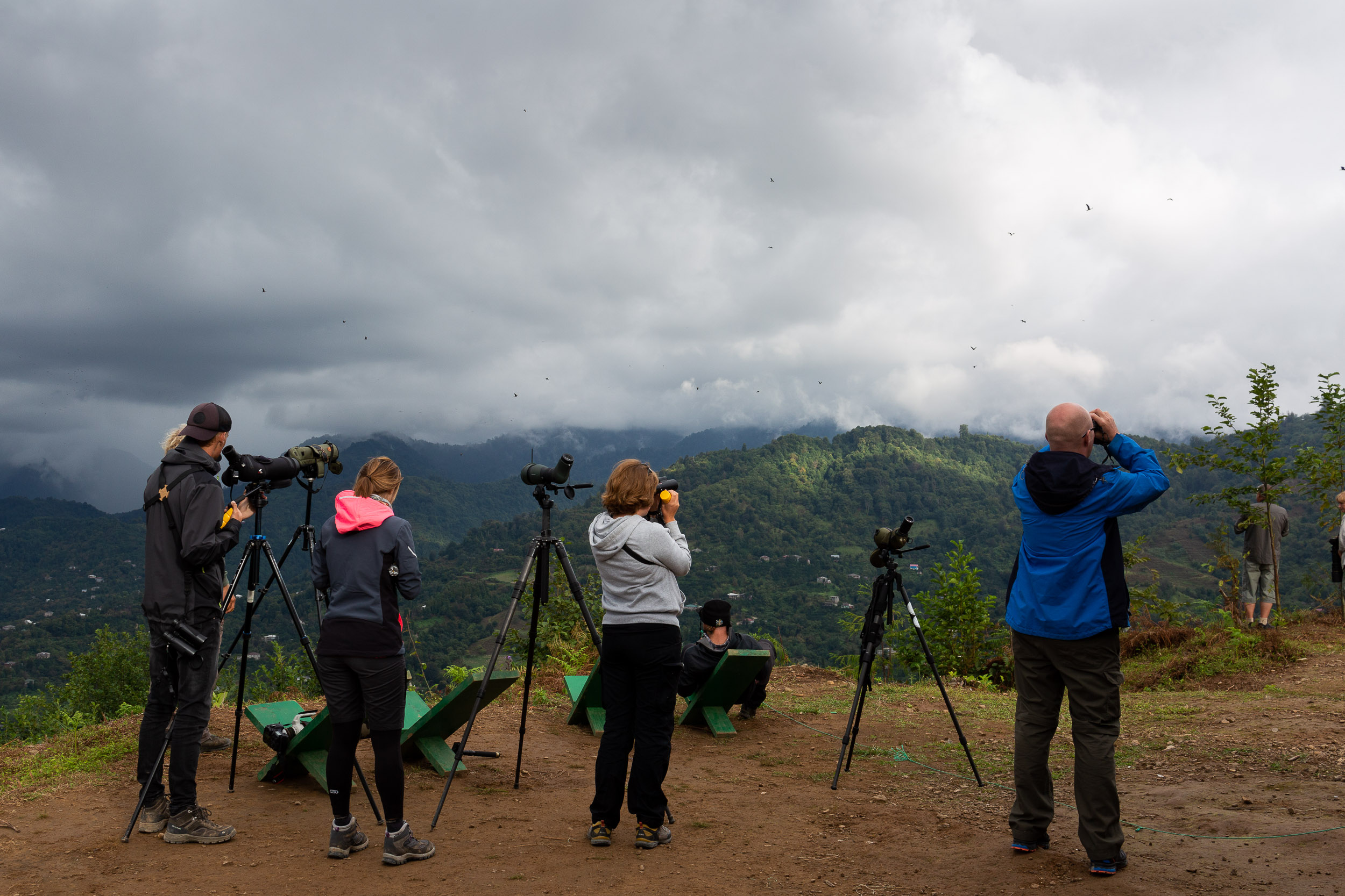Counters of the Batumi Raptor Count. Photo by Bart Hoekstra.
