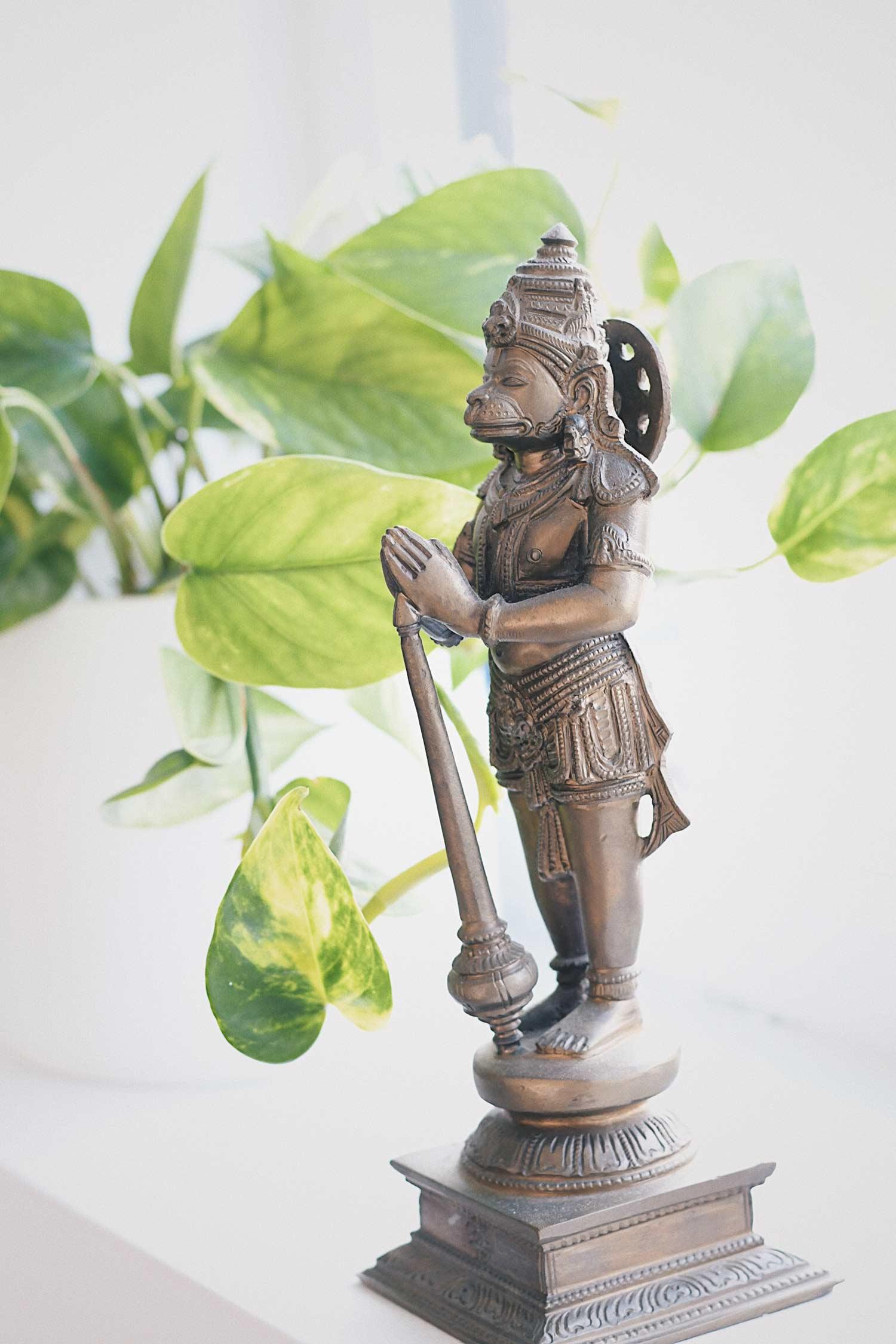 AYV_Hanuman_WEB.JPG