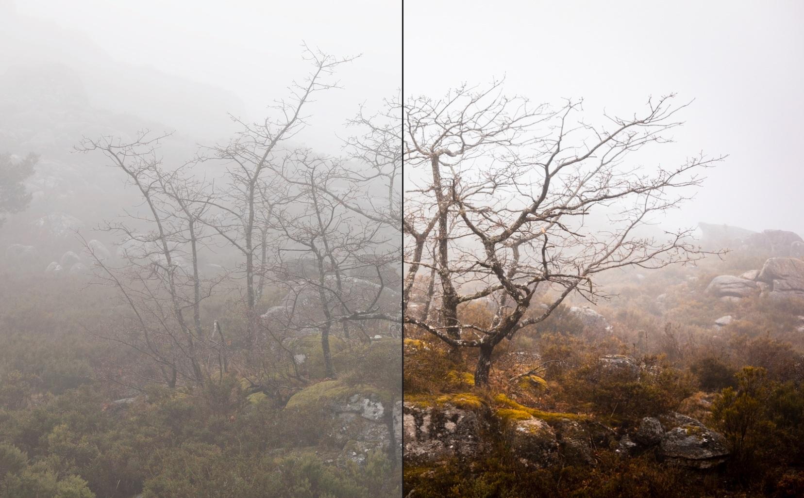 Com alguns retoques podemos passar rapidamente da imagem à esquerda (antes) para a imagem à nossa direita (depois). Conseguimos obter um aumento substancial de detalhe e contraste juntamente com um aumento de saturação das cores!