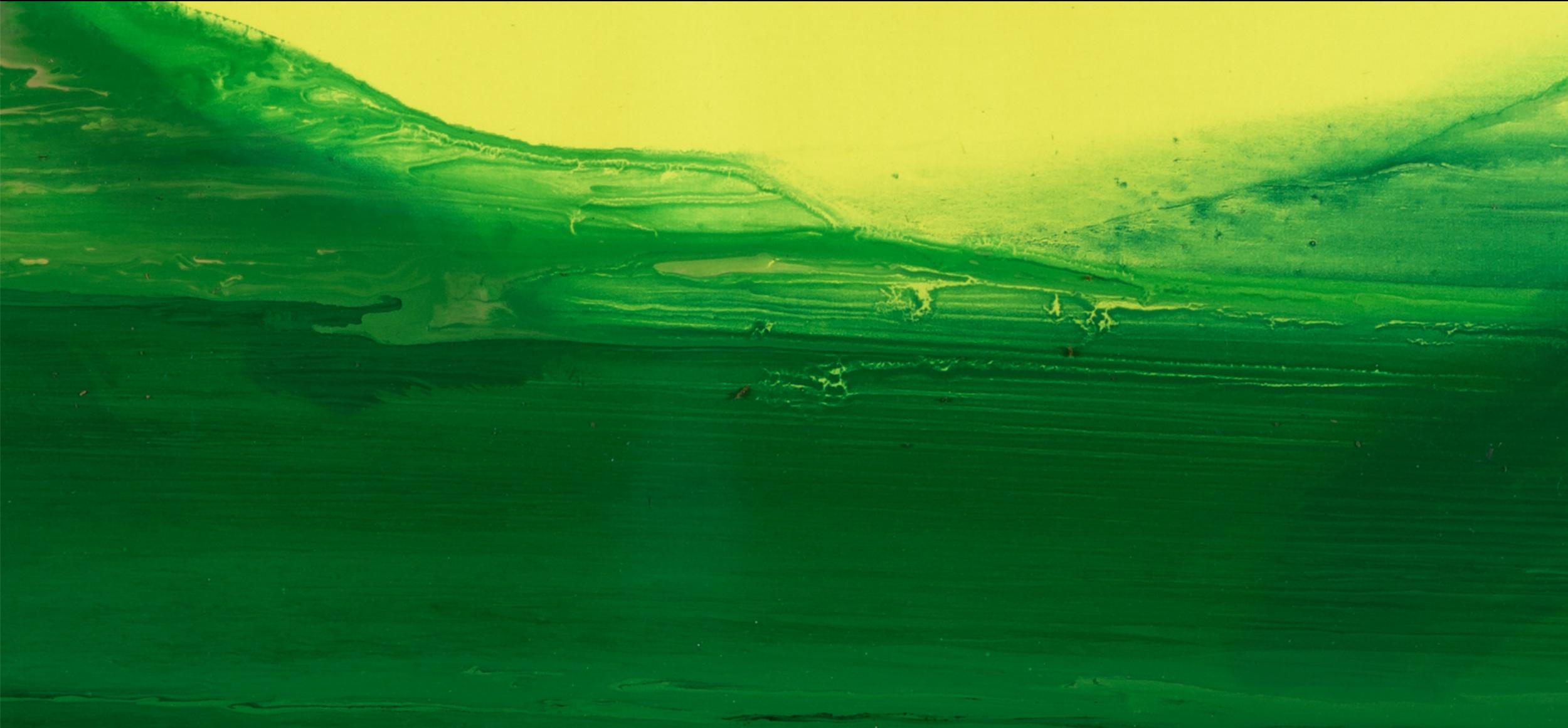 LANDSCAPE. MESOZOIC #1  Fragment / 2016  LIGHT exposure