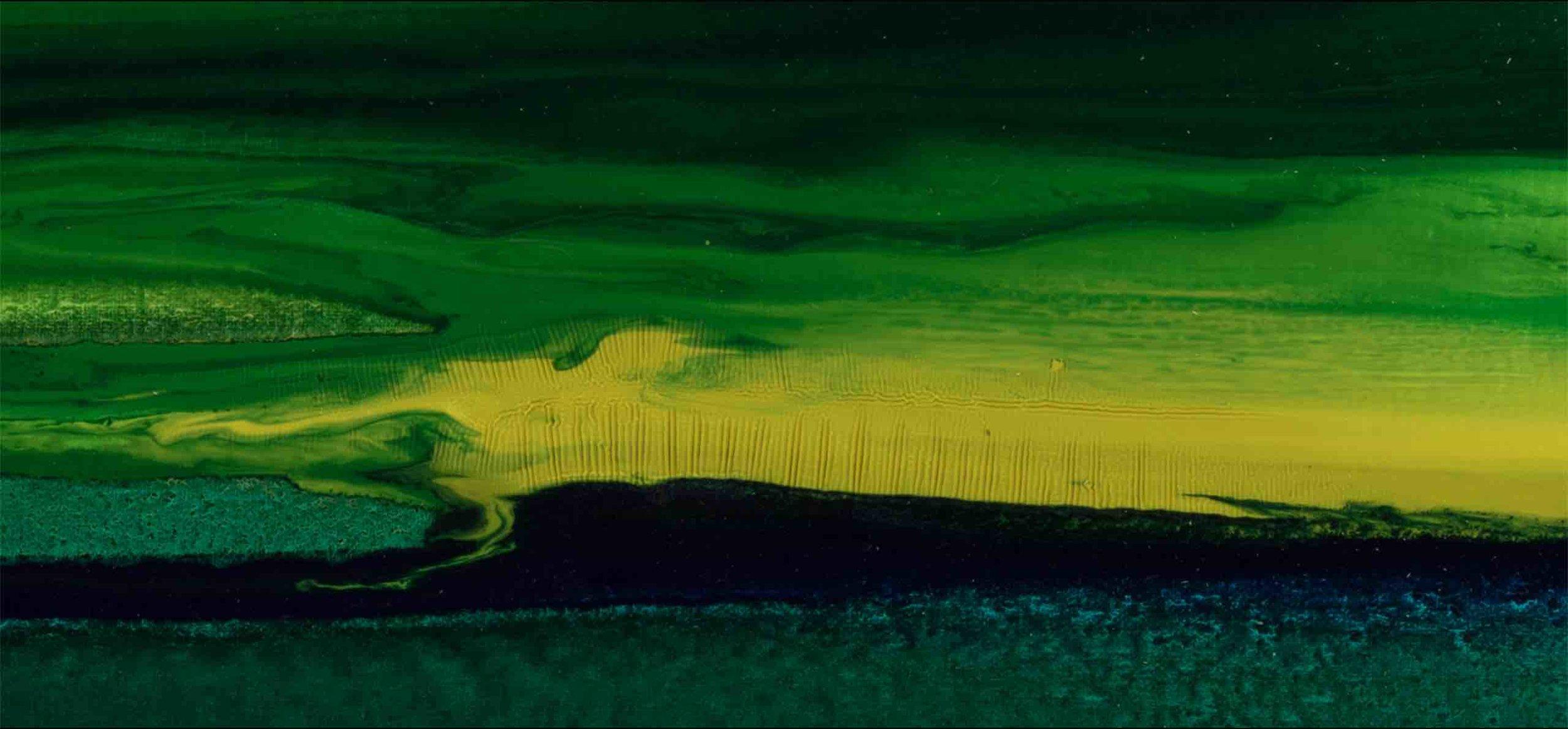 LANDSCAPE. MESOZOIC #2  Fragment / 2016  LIGHT exposure