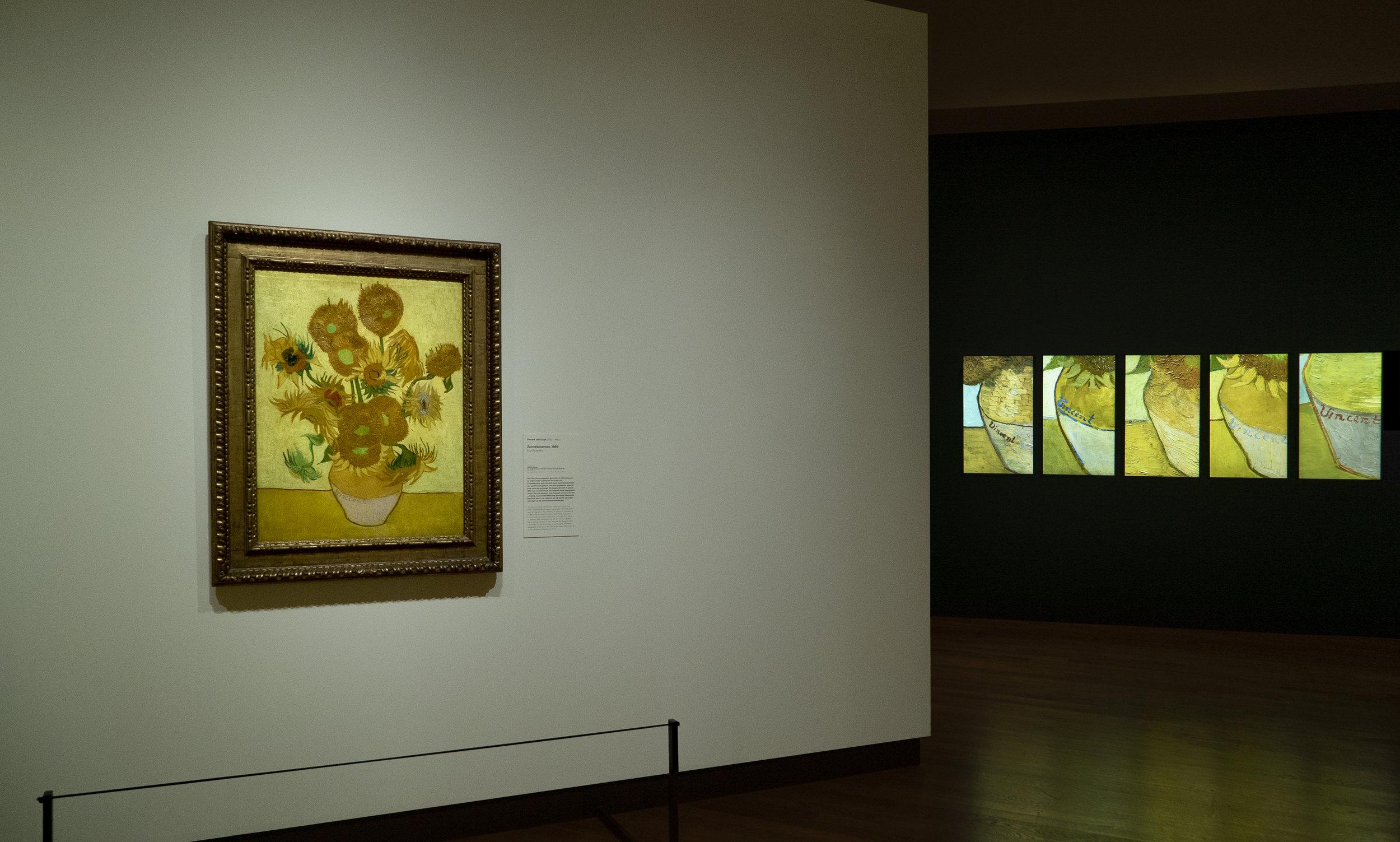 03 Sunflowers and 5 screen installation © David Bickerstaff.jpg