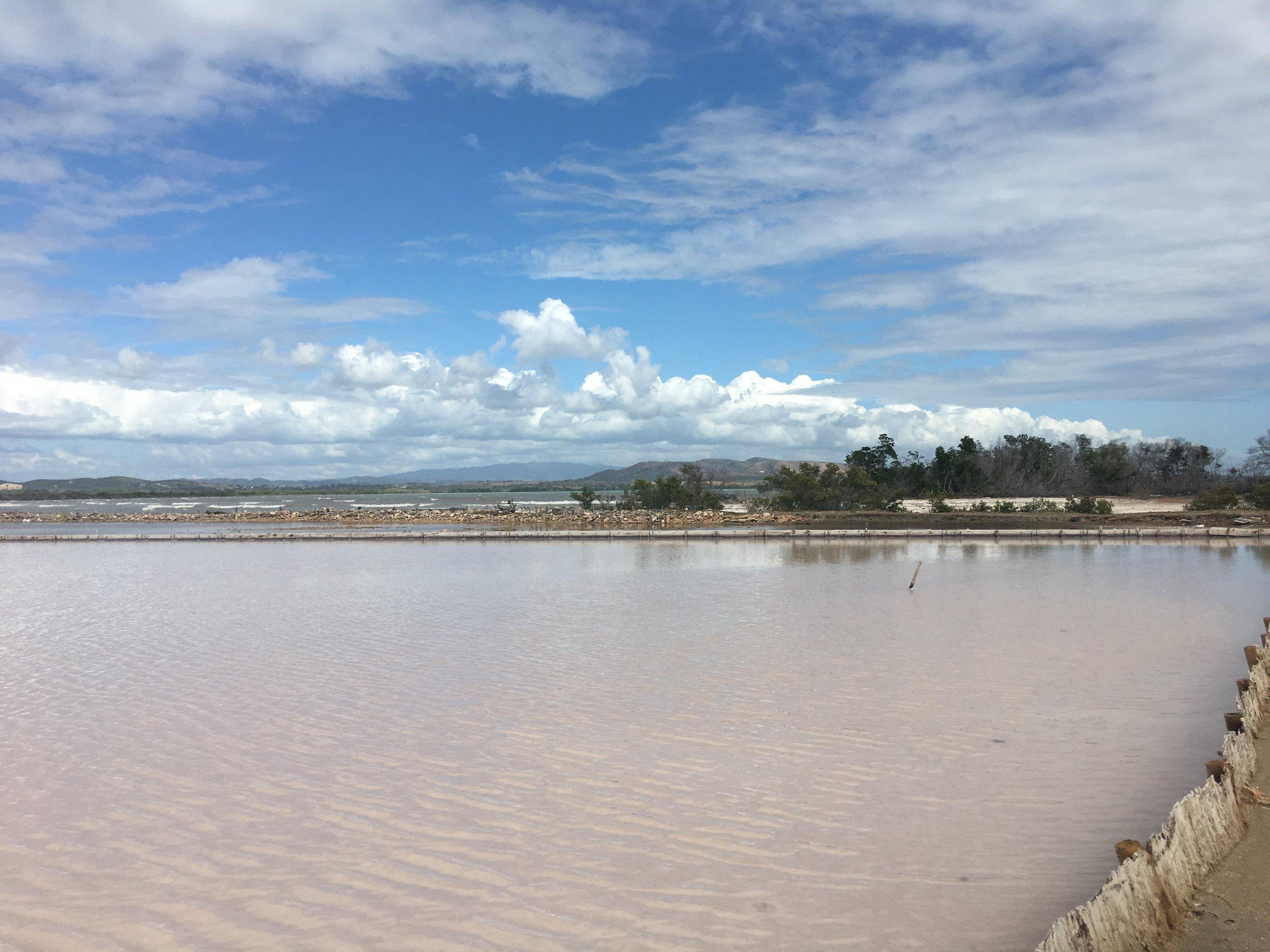 Hypersaline Lagoons, Salinas de Cabo Rojo